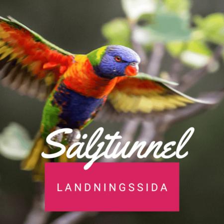 Säljtunnel - Landningssida - Bygg e-postlista